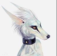 LadyLeia